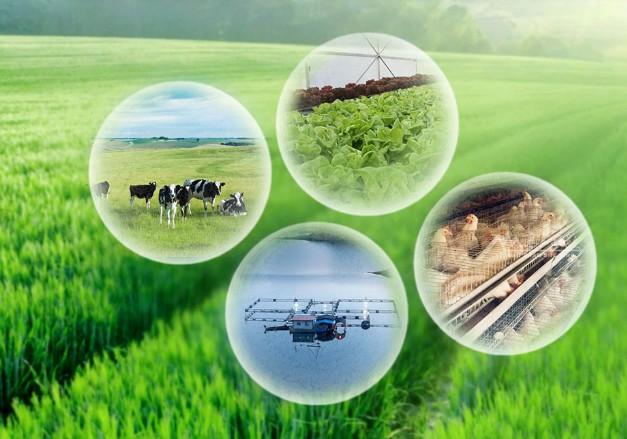 农业物联网的应用