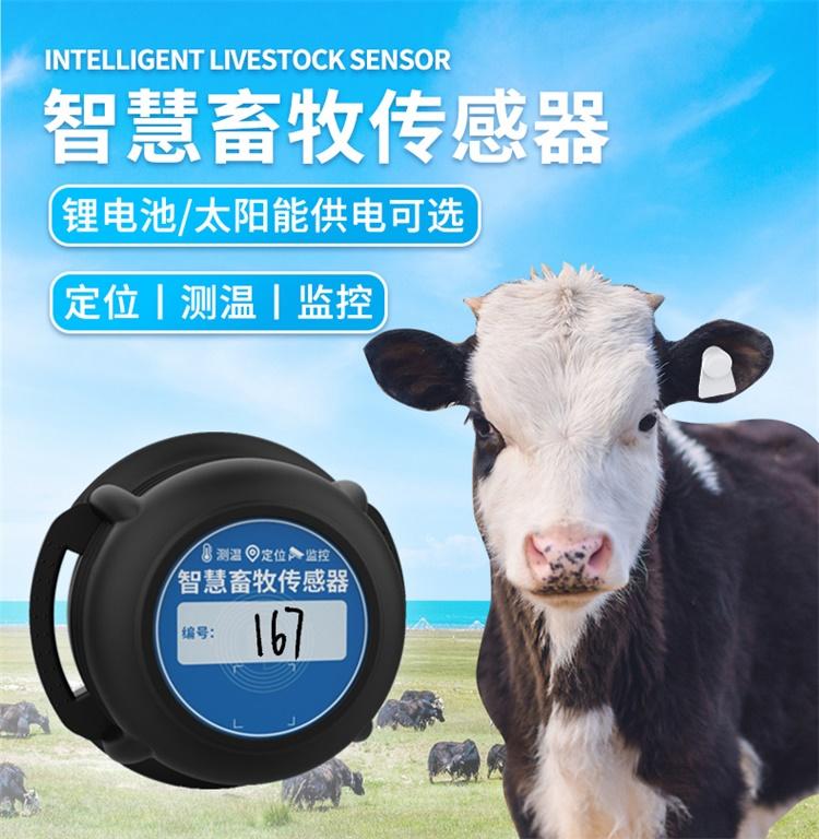 GPS牛羊定位跟踪器