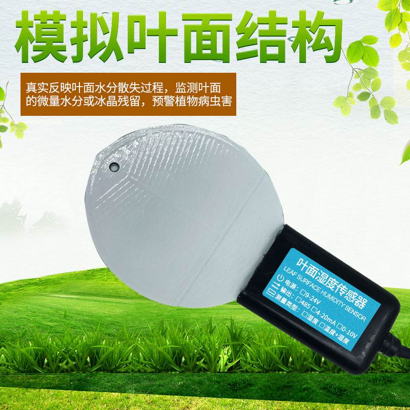 JXBS-3001-YMSD叶面温湿度传感器
